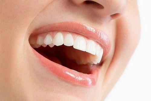 歯科 建物 壁 歯に関連した画像-01