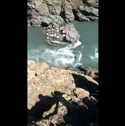 クマ 投石 落下に関連した画像-06