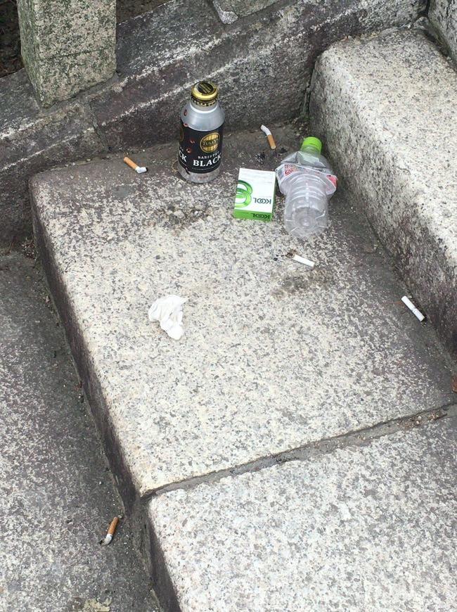 ポケモンGO 公園 ゴミに関連した画像-02