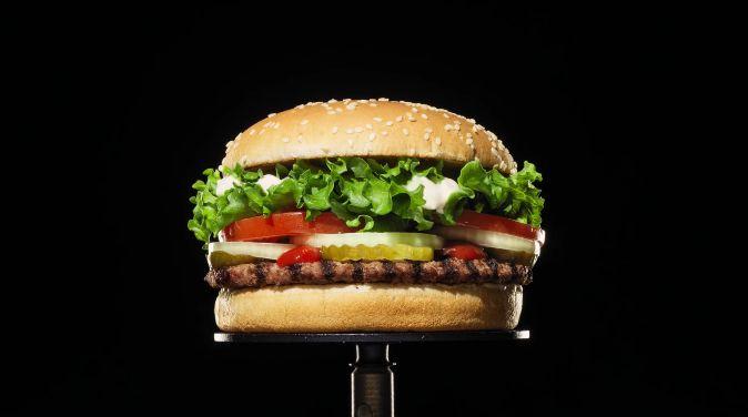バーガーキング カビ ハンバーガー 宣伝 防腐剤に関連した画像-03