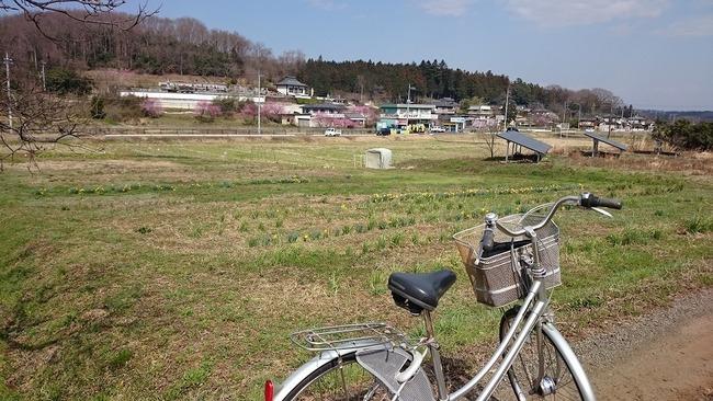 熊本 神奈川 箱根 自転車 窃盗 53歳 都会 東京 憧れに関連した画像-01