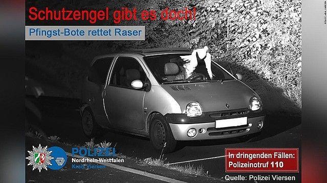 ハト ドイツ 速度違反に関連した画像-03