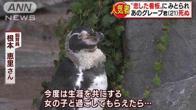 けものフレンズ けもフレ 東武動物公園 グレープ フルルに関連した画像-14