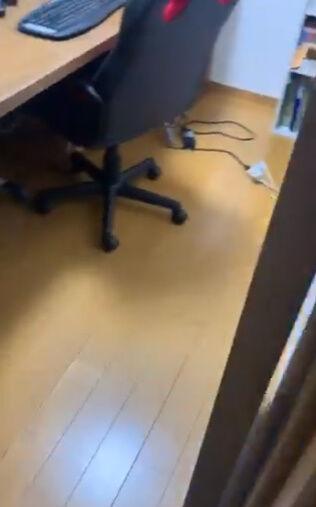 プリンター 印刷 紙 消失 問題 動画 プリントに関連した画像-03