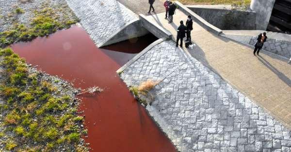 京都 鴨川 変色に関連した画像-01
