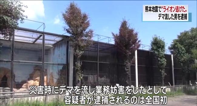 ツイッター デマ 逮捕 熊本地震 ライオン 動物園に関連した画像-09