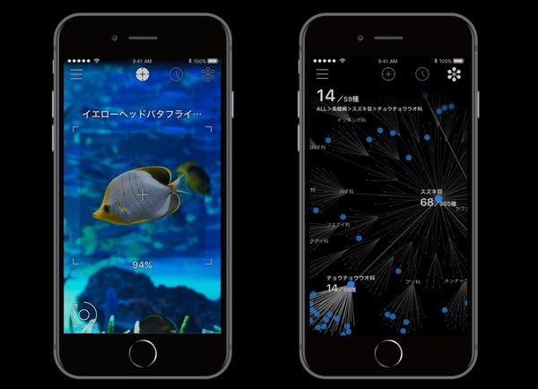 生物 iPhone 名前 アプリ リンネレンズ LINNE LENSに関連した画像-03
