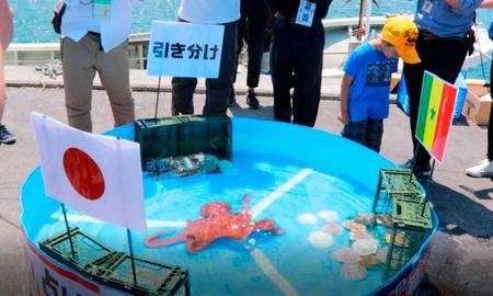 ラビオくん タコ 出荷 タコ箱漁オーナー ワールドカップ 占い 結果 クレーム 残酷に関連した画像-02