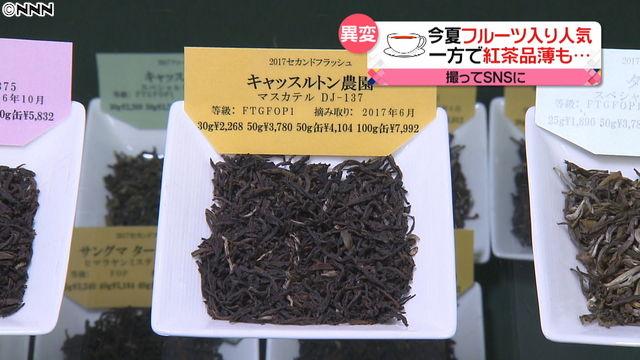 紅茶 ダージリン 茶葉 世界的 品不足 入手困難 値上げ 価格 高騰 ストライキに関連した画像-03