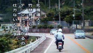公園 竹 小学生 秘密基地に関連した画像-01