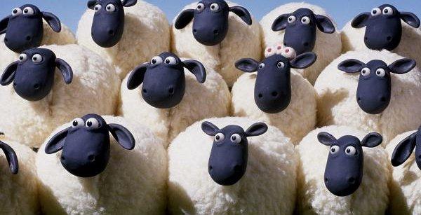 羊 1000頭 脱走に関連した画像-01