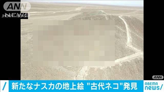 ナスカの地上絵 ペルー 新作 へたくそ ねこに関連した画像-01