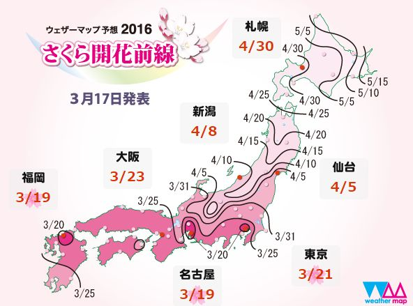 サクラ 花見 開花 満開 気象庁に関連した画像-03