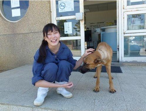 安楽死 自殺 動物保護施設に関連した画像-03