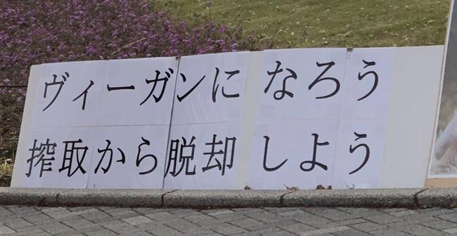 ヴィーガン 絶対菜食主義者 お台場 肉フェスに関連した画像,01