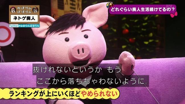ネトゲ ネトゲ廃人 NHK 特集 ねほりんぱほりんに関連した画像-23