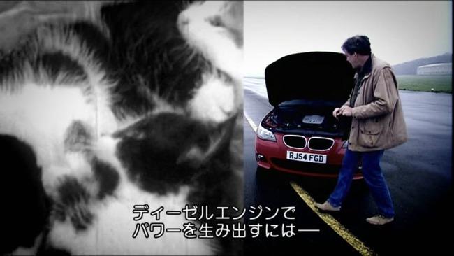 トップギア 車番組 猫に関連した画像-04