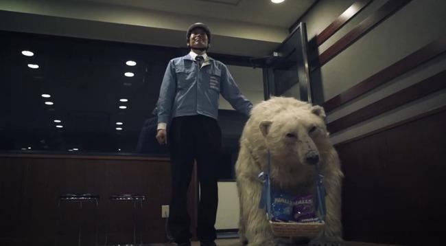 南條愛乃 ナンジョルノ シロクマ HALLS デリバリーベアサービス CMに関連した画像-08