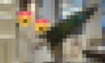 モンハン モンスターハンター 結婚式 ケーキ 入刀 ナイフ エピタフプレート 大剣に関連した画像-01
