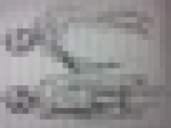 妖怪 生き物 UMAに関連した画像-01