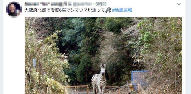 大阪 地震 SNS デマ 差別に関連した画像-01