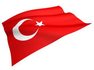 トルコDV防止条約脱退に関連した画像-01