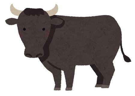 和牛 精液 出国 検査 中国に関連した画像-01