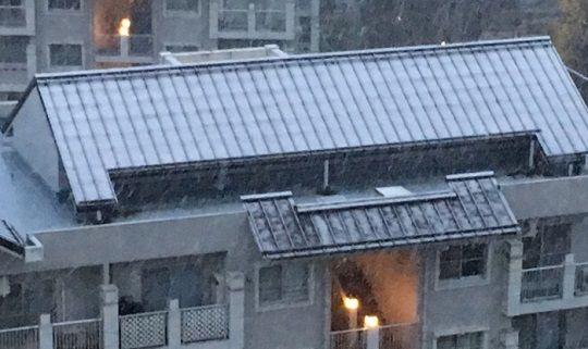 初雪に関連した画像-01