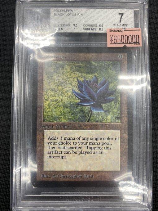 秋葉原 カードショップ 伝説 最強 MTG ブラックロータス 650万円 入荷に関連した画像-02
