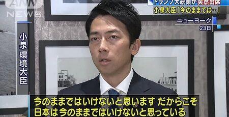 小泉進次郎 環境大臣 瀬戸内海 ごみ スニーカーに関連した画像-01