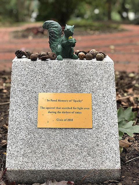 米国 大学 リス 停電 銅像 偉業に関連した画像-03