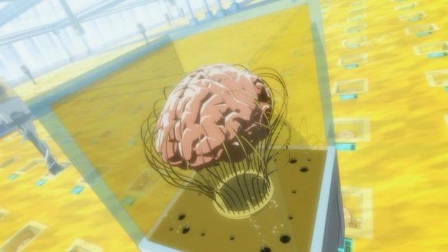 脳みそ 犬 路上 散乱 ニューヨークに関連した画像-01