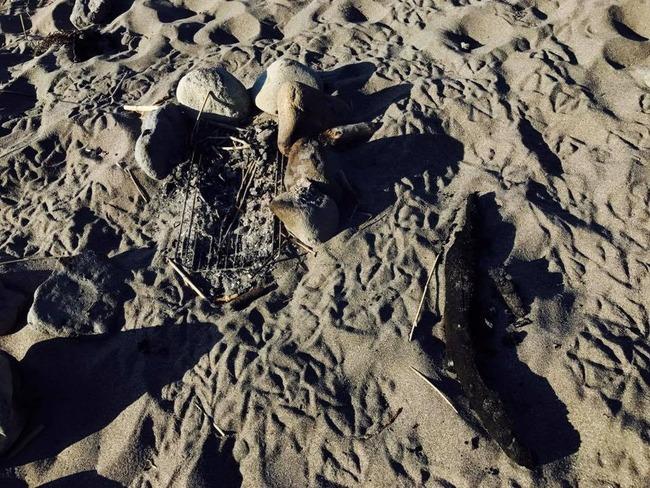 北海道 BBQ 海岸 砂浜 炭 放置 子供 火傷に関連した画像-04