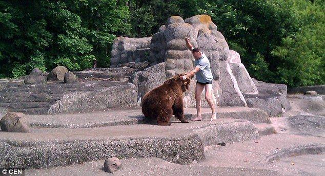 熊 乱入 に関連した画像-05