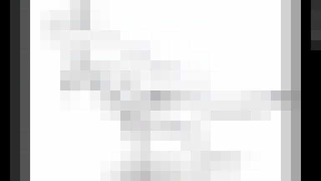 カンガルーに関連した画像-01