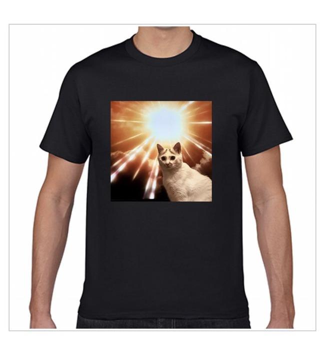ネコ 進撃の巨人に関連した画像-05