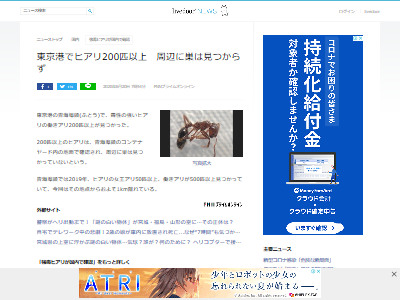 東京港ヒアリ200匹以上発見に関連した画像-02