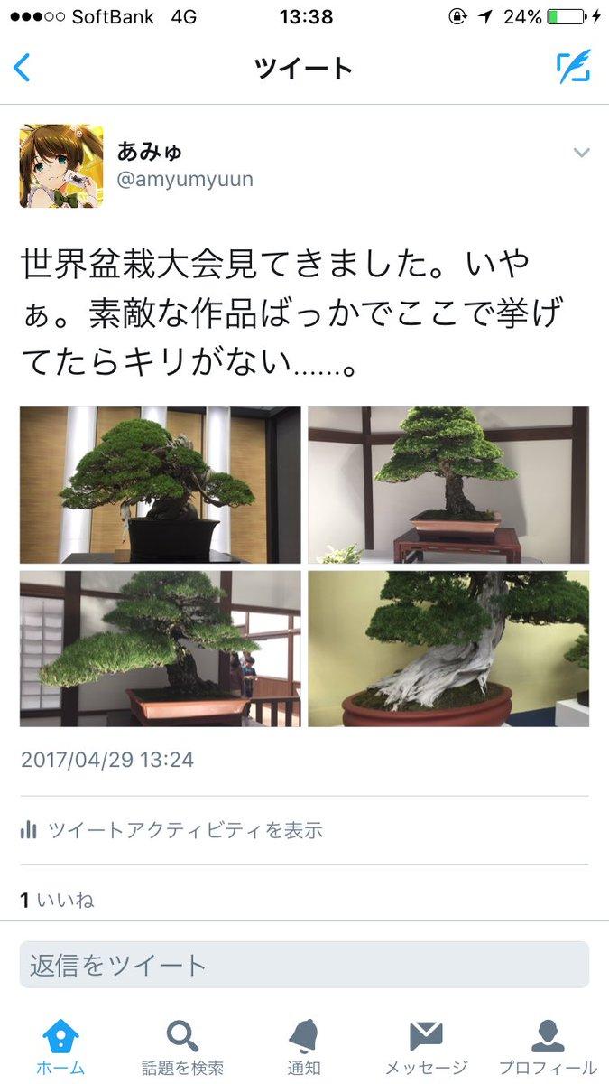 盆栽 良さ 例え 二次元 ロリババアに関連した画像-02
