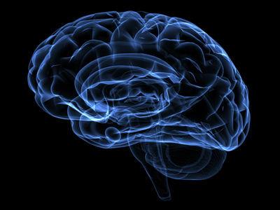 脳 再起動 風府 ツボに関連した画像-01