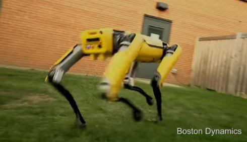 ボストンダイナミクス ビッグドッグ 四足歩行 ロボット 家庭用に関連した画像-01