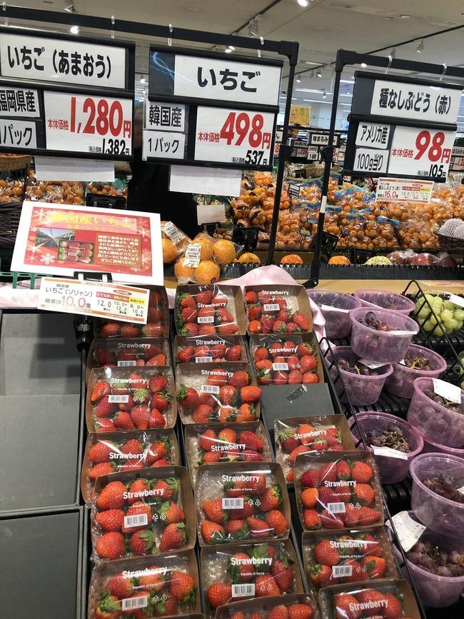 韓国産いちご ソリャン ソルヒャン 雪香 盗み パクリ 流出 日本 イオン 輸入に関連した画像-05