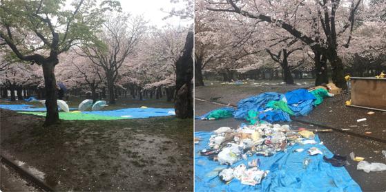 花見 ゴミ 放置に関連した画像-01