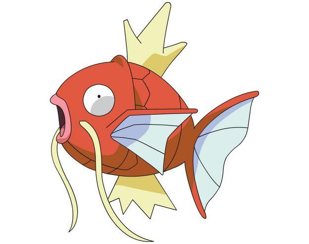 熱帯魚に関連した画像-01