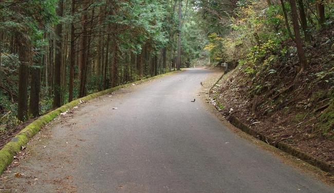 グーグルマップ 岐阜県 山間 林道 道路 現地調査 緑資源機構 遺構 談合 闇に関連した画像-01