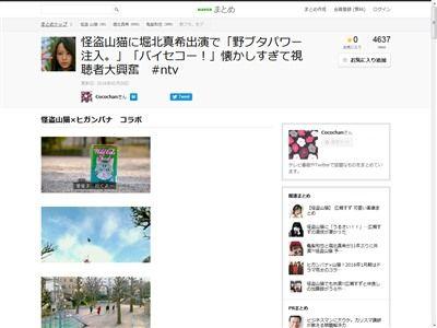 怪盗山猫 ヒガンバナ 野ブタをプロデュース 堀北真希 亀梨和也に関連した画像-02
