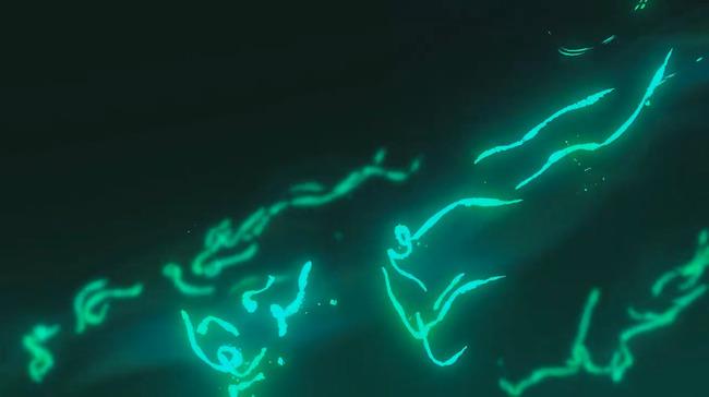Nintendo Direct E3 2019 ゼルダの伝説 ブレスオブザワイルドに関連した画像-07