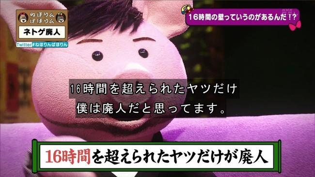 ネトゲ ネトゲ廃人 NHK 特集 ねほりんぱほりんに関連した画像-21