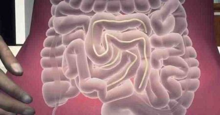 エナジードリンク 脳筋に関連した画像-01