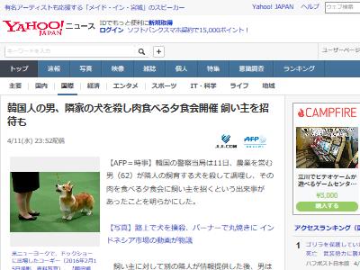 韓国 犬 ペット 調理 夕食会 飼い主に関連した画像-02