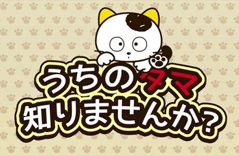 うちのタマ知りませんか アニメ アニメ化 ソニー 猫 犬に関連した画像-01